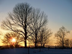 December Sunset Over Western Maine Hills (joyolsonnichols) Tags: trees winter sunset snow nature beauty field rural landscape farm country maine silhouettes sunrays nichols westernmaine mainephotography mainelandscape joynicholsartworkandphotography