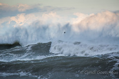 ocean 970 (cjnewlife12) Tags: storm waves outerbanks obx