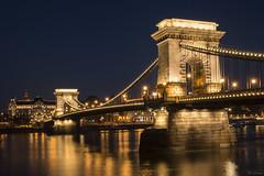 Budapest - Ponte delle Catene (4) (Yksel85) Tags: bridge night shoa nikon hungary budapest tram frog nebbia ferie scarpe ungheria holyday danubio scrittore lugnhesposizioni bastiodeipescatori