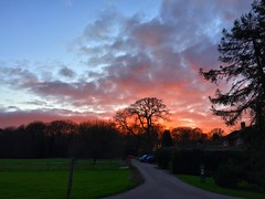 Red Sky Sunset (Marc Sayce) Tags: park sunset red sky forest downs sundown alice south hampshire surrey lodge national holt farnham sdnp