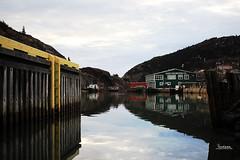 Quidi Vidi, St. John's, NL CANADA (Tina Dean) Tags: newfoundland stjohns atlanticocean quidividi atlanticcanada newfoundlandandlabrador quidividivillage tinadean imagesfromtheshutter tmdean tinagfw tinamdean