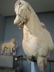 UK - London - Bloomsbury - British Museum - Ancient Greece collection - Mausoleum of Halikarnassos - Horse sculpture (JulesFoto) Tags: uk england sculpture horse london bloomsbury britishmuseum mausoleumofhalikarnassos ancientgreececollection
