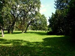 Jardin de Bagatelle (FloDL PEU PRESENTE) Tags: light shadow summer sun paris garden boulogne lumire tranquility ombre t arbre srnit jardindebagatelle parcdebagatelle
