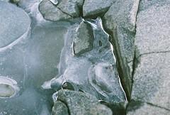 Iced Over Rocks (Rachael.Robinson) Tags: winter snow canada color film ice beach nature 35mm outside island rocks fujifilm campobello