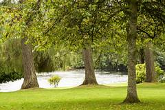 On the Banks of The River Tay, Dunkeld, Scotland (Jill Clardy) Tags: river scotland cathedral perthshire tay dunkeld churchofscotland 4b4a6613