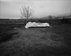 Untitled-353-2-JPEG (Kiriakos Korakis (korax67)) Tags: kodak trix january 2016 mamiya7 43mm prespes mikriprespa agiosachilleios