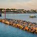 Port de plaisance 7