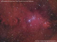 NGC2264 - Christmas Treet Cluster and Cone Nebula (Simon Todd Astrophotography) Tags: longexposure photoshop ninja cluster nebula astrophotography astronomy noise ccd deepspace celestron nebulae deepsky monoceros nebulosity ngc2264 conenebula skywatcher christmastreecluster cs5 atik c80ed autoguider astrotech maximdl qhyccd gradientxterminator eq8 at2ff 383l hlvg sequencegeneratorpro qhy5lii eq8pro ts9oag