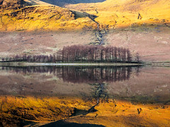 Adnvancing light receding frost (alf.branch) Tags: lake reflection water landscape frost lakes lakedistrict olympus zuiko buttermere refelections westcumbria westernlakes olympusomdem1 zuiko1240mmf28pro