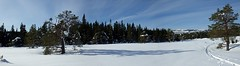 Bymarka, Trondheim (alexandre.lavrov) Tags: winter norway norge skiing trondheim bymarka trondhjem