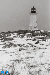 Peggys Cove Lighthouse Snow Storm 5 (Rodney Hickey Photography) Tags: ocean sea lighthouse snow canada storm nature weather photoshop landscape bedford outdoors nikon novascotia cove ns atlantic adobe portraiture nikkor halifax peggys dartmouth sackville lightroom adobecs nikkorlens rhp lowersackville d610 adobecreativesuite d7100 middlesackville rodneyhickey rodneyhickeyphotographyanddesign rodneyhickeyphotography wwwrodneyhickeyphotographyca httpwwwrodneyhickeyphotographyca