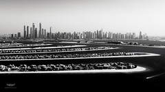 The Palm Jumeirah and Marina, Dubai, UAE (ralfmartini805) Tags: sea bw monochrome marina blackwhite asia dubai uae palm arabic arabian jumeirah vae