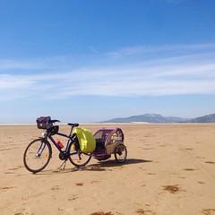 Rutadelosfaros Trip Travel Traveling Bike Bike Life Beach Tarifa Cadiz Andaluca SPAIN Traveling With My Dog Costa Del Viento (db fotografa) Tags: trip travel beach bike andaluca spain cadiz traveling tarifa bikelife rutadelosfaros travelingwithmydog costadelviento