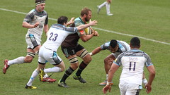 2016_04_02 Quins v Newcastle_20 (andys1616) Tags: newcastle rugby april stoop falcons aviva premiership twickenham quins 2016 harlequins rugbyunion