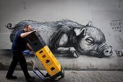 """Leffe """"Made in Belgium"""" (Mara Castillejo) Tags: street art graffiti pig belgium belgique made leffe rue mara cochons castillejo"""