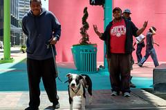 Men and Dog - Art Blocks (minus6 (tuan)) Tags: mts minus6