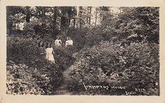 8325. Hampton Woods (c.1929)