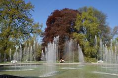 Palmengarten, Oktogonbrunnen / octogonal fountain (HEN-Magonza) Tags: nature fountain deutschland flora hessen frankfurt brunnen natur palmengarten gemany hesse oktogonbrunnen octogonalfountain