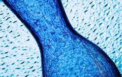 Blue (Karen_Chappell) Tags: blue stilllife abstract glass textures vase