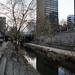 10km revitalizados em um parque linear