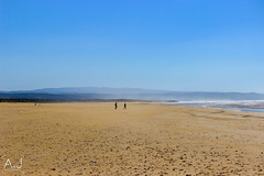 IMG_3526 (alitopics) Tags: beach landscape amazing maroc essaouira morrocco landscaper beachview amazingview