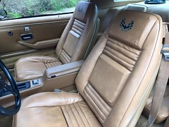 """1978 Bandit Trans Am • <a style=""""font-size:0.8em;"""" href=""""http://www.flickr.com/photos/85572005@N00/26213489876/"""" target=""""_blank"""">View on Flickr</a>"""