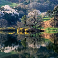 Nature, A Magnificent clicks of landscapes (PhotographyPLUS) Tags: pictures graphics photos illustrations images stockphotos articles footage stockimage freephoto stockphotograph