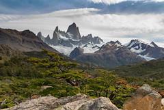 Fitz Roy, Parque Nacional de los Glaciares, Argentina (javi.velazquez) Tags: park parque sky tree verde green argentina roy landscape arbol paisaje mount national monte montaa mountaint fitz