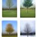 Four Seasons 2x2