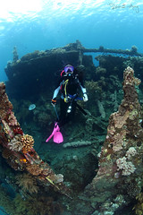 Wreck (Randi Ang) Tags: bali canon indonesia photography eos underwater angle wide dive scuba diving fisheye ang wreck 15mm randi 6d javanese amed