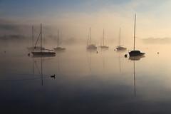 Sunrise (rogermarcel) Tags: sun mist landscape boat duck canard brume waterscape bestcapturesaoi elitegalleryaoi rogermarcel