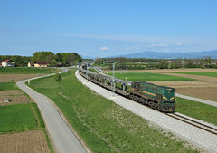 664 104, Ptuj, 15 April 2016 (Mr Joseph Bloggs) Tags: railroad train diesel merci railway cargo slovenia reagan locomotive bahn treno freight 104 ptuj sz vlak emd 664 slovenske hodos pragersko hodoš 664104 emdg26hcw2