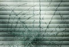Cobweb made of glass (mennomenno.) Tags: sunlight abstract abandoned broken window shop rotterdam winkel zonlicht ruit shadowlight luxaflex verlaten schaduwlicht hofbogen gebarsten