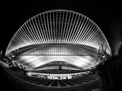 Ein Bahnhof (zuiko12) Tags: blackandwhite bw night prime streetphotography olympus 8mm zuiko omd em1 club16 mzuiko