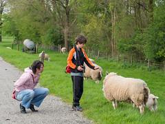 20160422-190735.jpg (frank.hoekzema) Tags: family people niels renske schaap