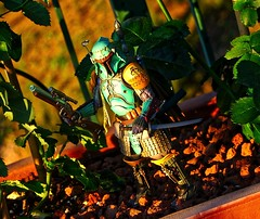 On the Hunt (BrickSev) Tags: fiction sunset japan movie toy toys actionfigure photography japanese star action outdoor space science actionfigures figure scifi bobafett hunter sciencefiction samurai boba wars collectible figures bounty nations collectibles bandai fett ronin feudal bountyhunter mandalorian realization toyphotography tamashii mandalorians