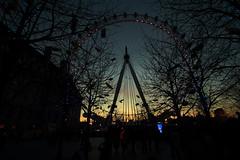 London Eye (DonCarlosRutter29) Tags: light england london eye wheel photography low capital landmark icon tourist nightscene