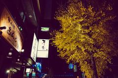Tokyo Christmas Lights Illumination (Oeil Photography) Tags: christmas street blue fashion night island lights tokyo ginza holidays photographer illumination midtown nighttime newport roppongi rhode chanel afterdark oeilphotography