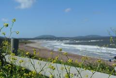 Una de sus playas