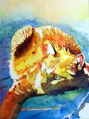 Yellow cat, by Ademar - DSC02184 (Dona Minúcia) Tags: cute art animal yellow cat watercolor painting paper arte amarelo study gato fofo pintura aquarela gracinha