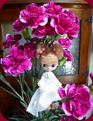 BaD Feb 7 - Sweet tooth (lyndell23) Tags: carnations blythedoll bythe clionetti blytheaday takarapetite picmonkey