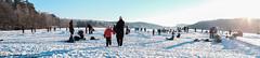 186/365 Frozen lake