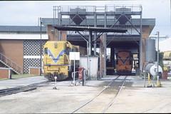 DA1572 271095 (Swanriverwine) Tags: wagr westrail wagrd wagrda emd railways forrestfield train