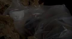 Zwischen Mll und Hoffnung (BI Mncheberg_global denken - kommunal handeln) Tags: krieg afrika welt syrien libanon libyen kolonialismus dritte kinderarbeit flchtlinge menschenhandel sklaven imperialismus organhandel trikont klimakatastrophe 3welt landgrabbing landraub fluchthelfer wirtschaftsflchtlinge fluchtursachen