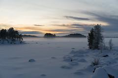 (DrowsyPotato) Tags: sunset snow zeiss landscape sweden sony swedish 55mm carl land 100 mm fe alpha f18 za 550 140 swe 80 ilce7rm2