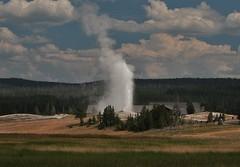 Old Faithful geyser (OttawaRocks) Tags: park usa us oldfaithful yellowstone wyoming geology geyser erupts