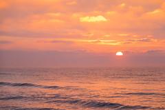 Sunrise by the Sea (Infomastern) Tags: winter cold vinter frost rime rimfrost kallt skateholm