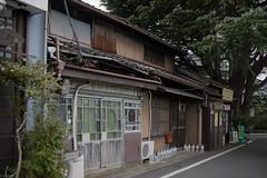 cedar and tenement (kasa51) Tags: door house building tree window japan tokyo alley tenement ceder