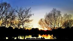 """""""Non avere paura di vivere emozioni; ma abbi solo il timore di trascorrere una vita senza averne vissute"""" (onDa8) Tags: tramonto vita emozioni"""
