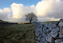 Dales (plot19) Tags: uk trees england sky tree english wall landscape photography britain sony yorkshire north land limestone british now northern dales rx100 plot19